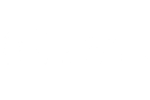 The Rocky Mountaineers Image